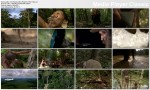 Planeta ludzi / Human Planet (2011) PL.TVRip.XviD / Lektor PL