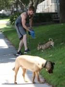Kellan Lutz walking the dogs - July 15th, 2010 Ee305088773341